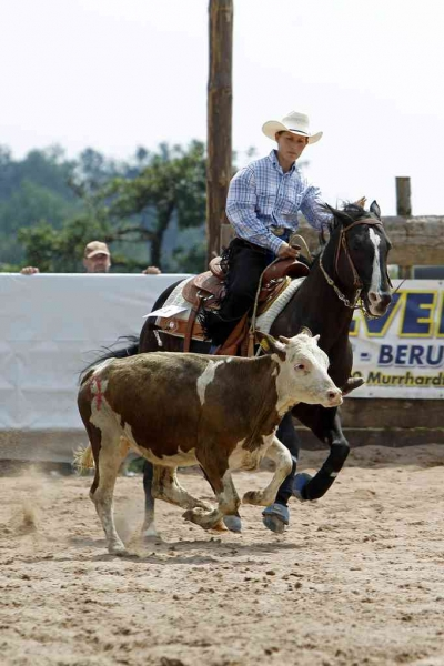20140727_Alexandra_Schürmann_Kings_Little-Bueno_Ranch_Cow_Work_T6Q5284-Kopie-FB