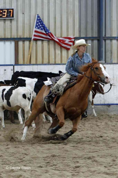 20160529_Alexandra_Schürmann_Shiney_Bud_Ranch_Cutting_T6Q6756-Kopie-FB-1