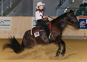 Alexandra Schürmann mit Tilley Tucker, Reining, Deutsche Meisterschaft (1997)