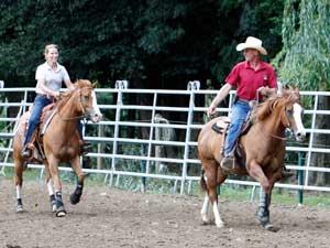Cowhorse-Training mit Patrick Sattler