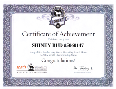 Shiney Bud - Certificate of Achievement