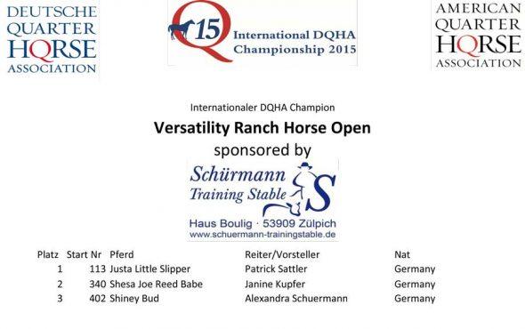 Q15-VRH-Open-Gesamtwertung