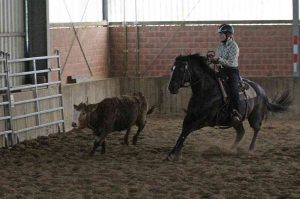 Ranch Cow Work: Clara Breuer und Kings Little Bueno