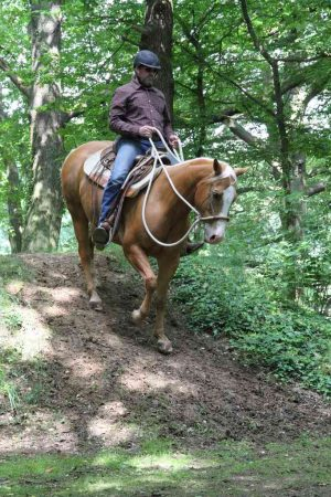 20180603_Ranch_Trail_Hügel_Mark_Schwed_IMG_1491