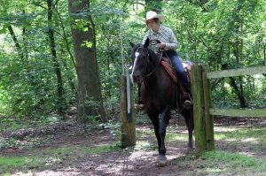 Ranch Trail, Tor: Clara Breuer und Kings Little Bueno