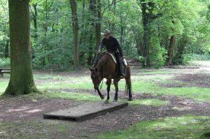 20180603_Ranch_Trail_Brücke_Dieter_Hartmann_IMG_1554