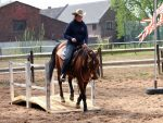ranch-trail-bruecke-verena-20130428-900x675px